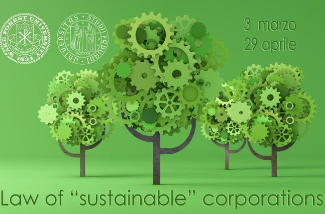 Collegamento a The Law of the «sustainable» corporations